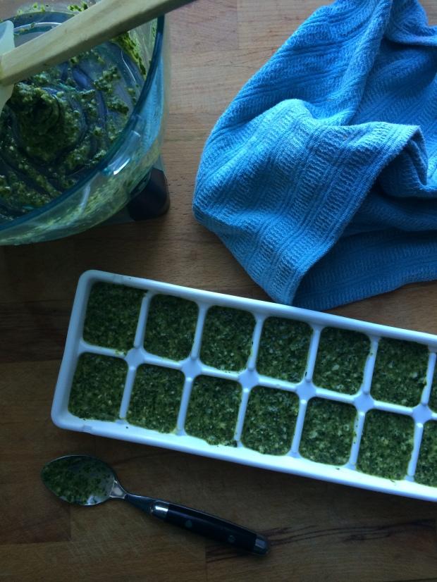 How to freeze basil pesto